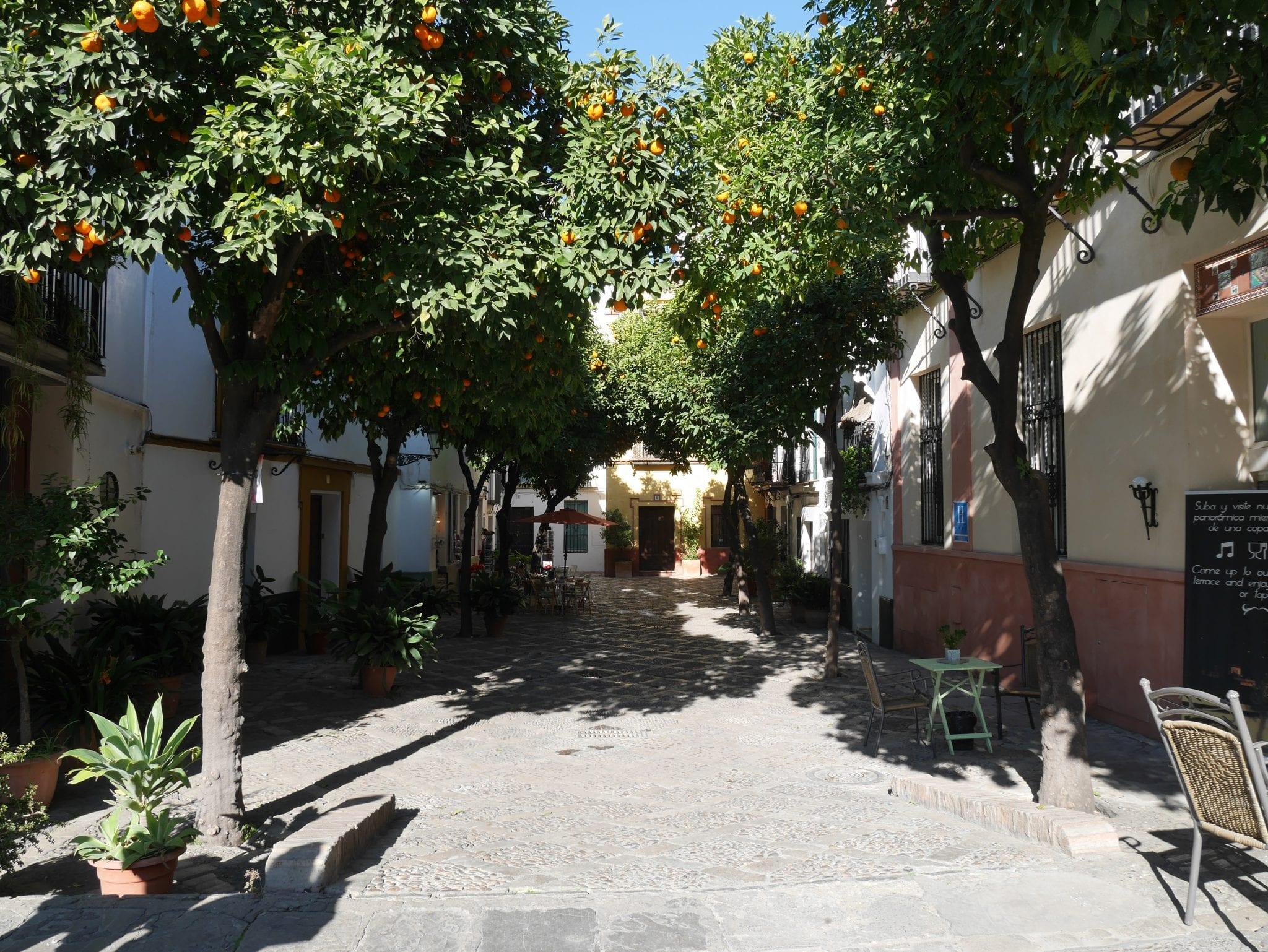 Placa-de-alleanza-Barrio-de-Santa-Cruz-Siviglia-Le-Plume